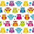 Naughty Owl Happy Birthday Wrapping Paper - 16 ft Roll