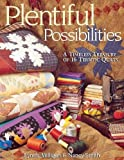 img - for Plentiful Possibilities. A Timeless Treasury of 16 Terrific Quilts book / textbook / text book
