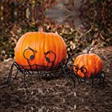 Spider Pumpkin Holders, Set of 2
