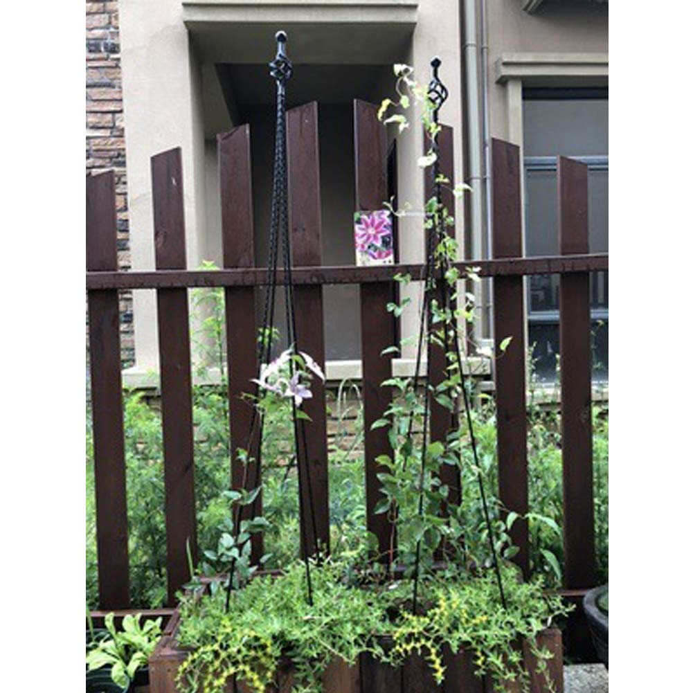 Enrejado de jardín Obelisk para Plantas de Escalada en Maceta ...