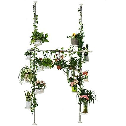 BAOYOUNI Stands de plantas en interior primavera doble tensión poste metálico de flores pantalla Rack Ahorro