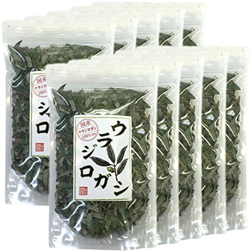 Japanese Tea Shop Yamaneen Urajirogashi-Tea 100G x 10packs by Japanese Tea Shop Yamaneen