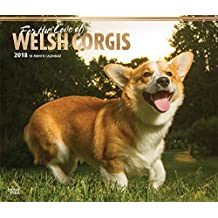 For the Love of Welsh Corgis 2018 14 x 12 Inch Monthly Deluxe Wall Calendar with Foil Stamped Cover, Animal Dog Breeds (English, French and Spanish Edition)