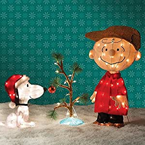 Amazon.com: Charlie Brown, Snoopy & The Lonely Tree ...