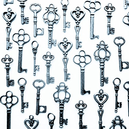 48PCS Antique Mini Collection Skeleton Keys, Vintage Steam Punk Keys, Castle Dungeon Pirate Keys for Birthday Party Favors, Mini Treasure Toy Gifts (Silver)