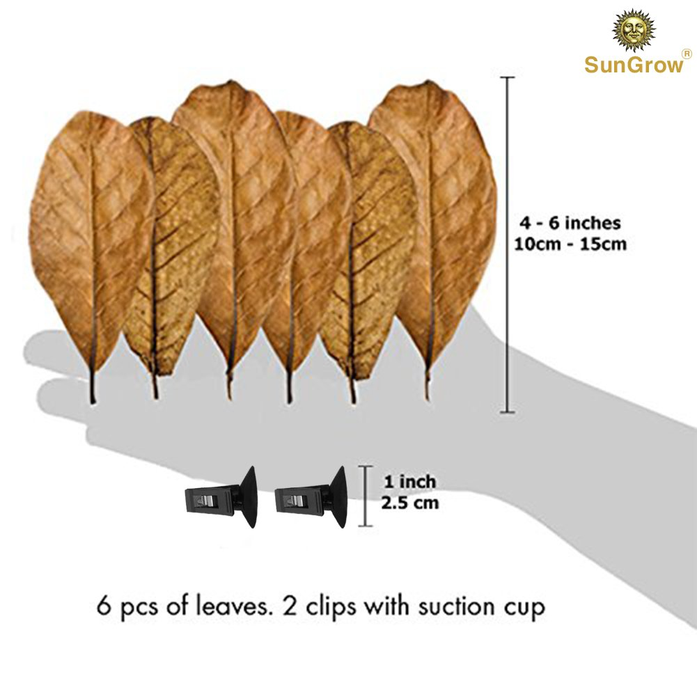 Betta Bed Kit (6 Beds + 2 Suction Cups) by Sungrow - Non-plastic, BPA-Free Hammock - Natural, Organic, Comfortable Rest Area for Fish Aquarium - Improves health by Simulating Betta\'s Natural Habitat