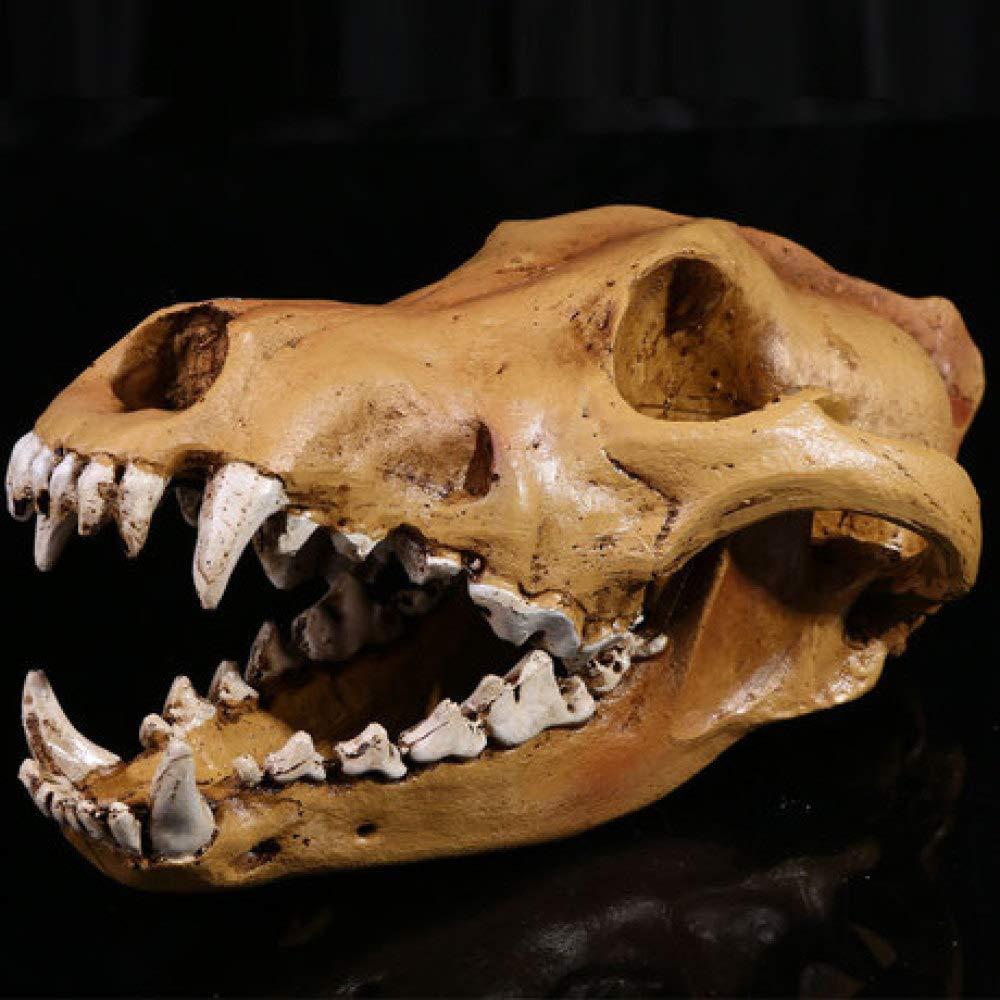 BUG-LPH Medical Skull Home Art Decoration Resin Crafts 1 1 High Simulation Wolf Skull Model Resin Skull
