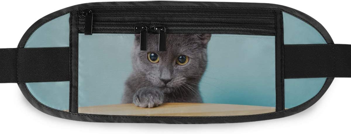 Beautiful Gray Pedigree Cat Chartreux Running Lumbar Pack For Travel Outdoor Sports Walking Travel Waist Pack,travel Pocket With Adjustable Belt