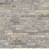 Silver Ash Veneer 8 in. x 18 in. x 10 mm Tumbled Travertine Mesh-Mounted Mosaic Tile