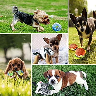 BUIBIIU-Dog-Toys-Dog-Teething-Toys-Best-Puppy-Chew-Toys-Dog-Chew-Toys-Squeaky-Toys-Balls