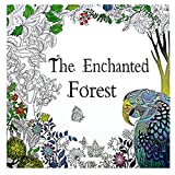 Fun Adult Coloring Book Designs Stress Relief Coloring Book Lost Ocean/Secret Garden (The enchanted forest)