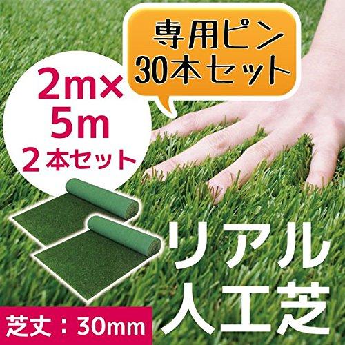 人工芝 C型 芝丈30mm 2m×5m 2本セット 押さえピン30本付 お得セット これでお庭をリニューアル!! B01C6S0W0G