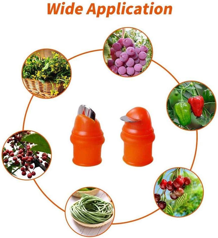 12 Paquete de Cuchillo de Pulgar de Silicona Cuchillo de Dedo Separador Cuchillo de Planta Herramientas de Jardiner/íA Vegetal para Cortar Frutas y Verduras
