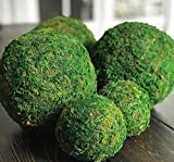 12'' Decorative Handmade Moss Balls for Home Decor, Vase Bowl Filler, Planters, Trays, Lanterns, Weddings, Parties, Farmhouse Rustic Style Decoration Green
