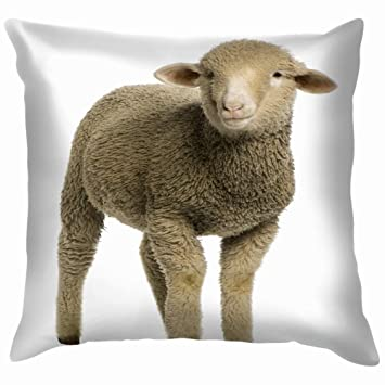 sheep with lamb Zippered Pillow Cases Cover 20x30 Inch