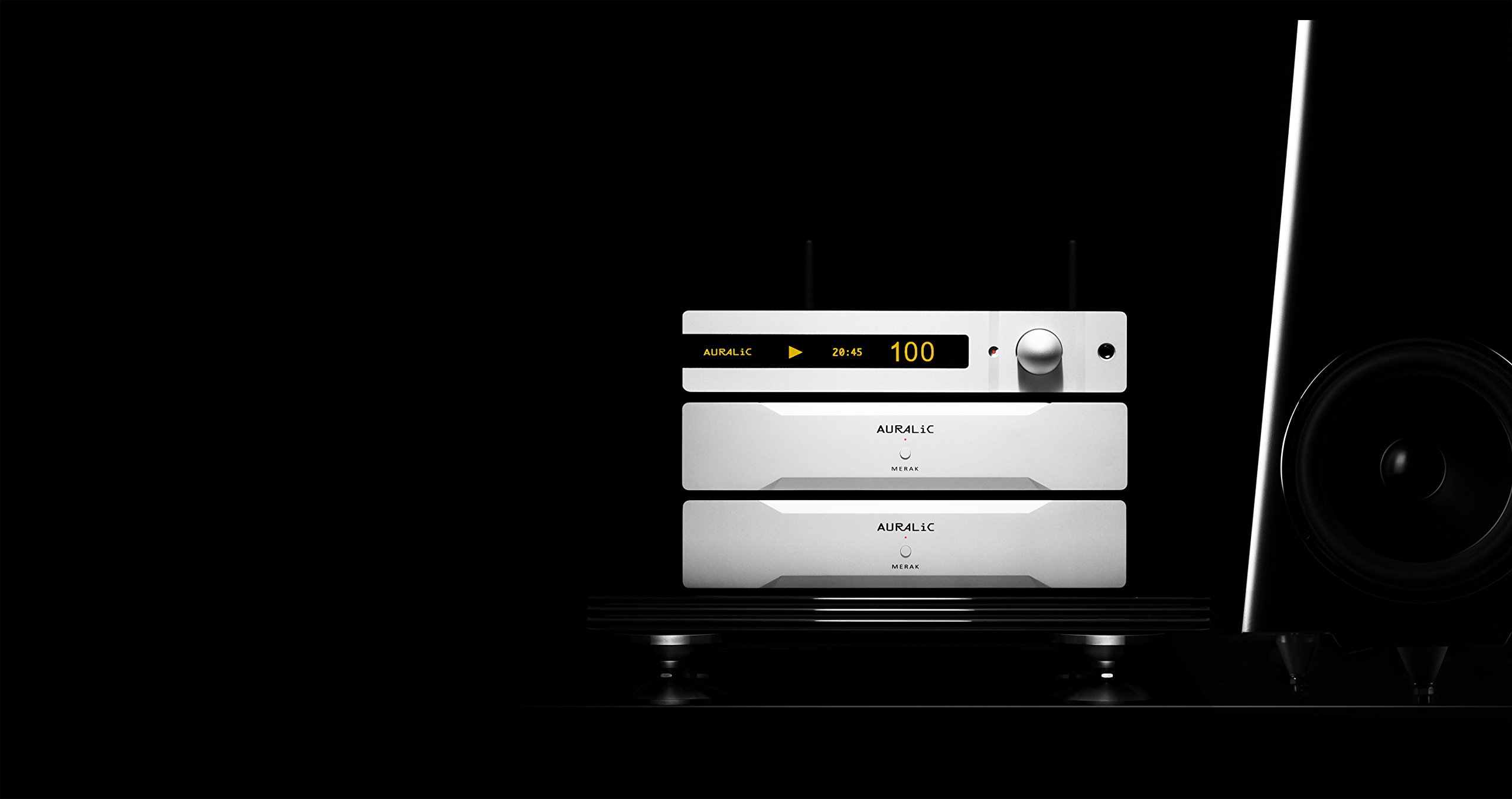 AURALiC ALTAIR Wireless Streaming DAC (Silver) by AURALiC (Image #3)