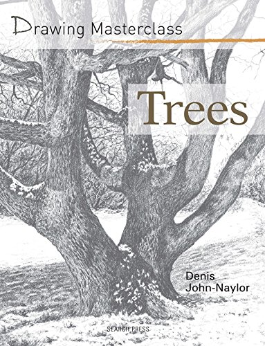 drawing a tree - 6
