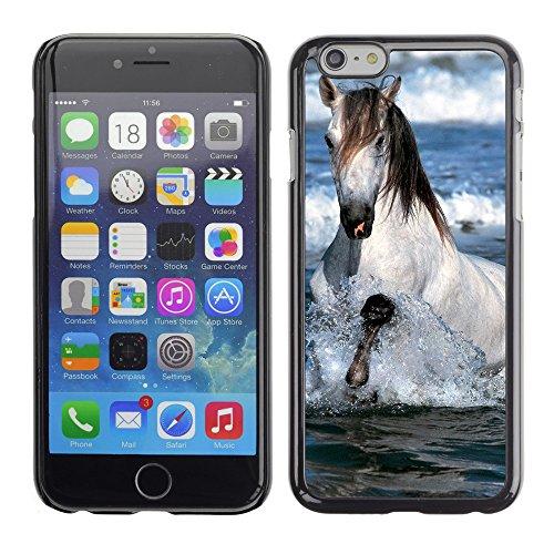"""Premio Sottile Slim Cassa Custodia Case Cover Shell // V00003992 cheval blanc courir dans l'eau // Apple iPhone 6 6S 6G PLUS 5.5"""""""