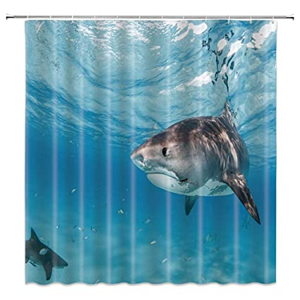 Image Unavailable Not Available For Color Shark Shower Curtain
