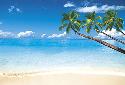 CSFOTO 5x3ft Background For Tropical Sunny Beach Photography Backdrop Blue Sky Sailboat Wedding Summer Holiday