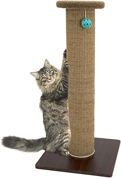 Cat Toy with Scratch Pad Scratching Mat Cat Scratching Toy Kitty City Cat Toy Collection