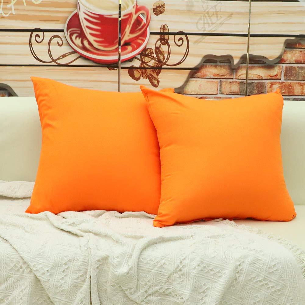 JOTOM Housse de Coussin Couleur Pure Feuilles Matelass/ées Taie doreiller pour Canap/é Maison Salon Chambre D/écoration Dint/érieur 43x43cm Orange Ensemble de 2 pi/èces