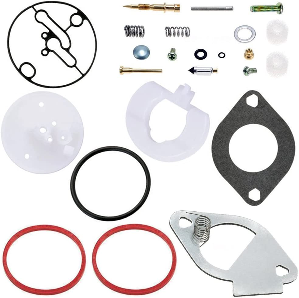 QAZAKY Carburetor Rebuild Kit for Briggs & Stratton Master Overhaul Nikki Carbs 796184 698787 699900 699521 792369 790032 Craftsman 11HP - 19HP Engine
