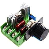 Régulateur de tension voltage contrôleur vitesse dimmer SCR 2000W AC 220V