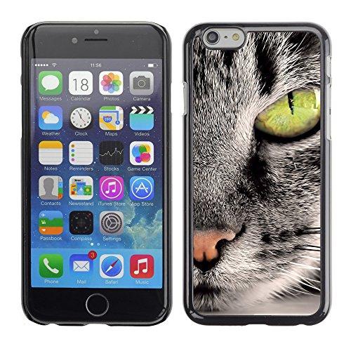 "Premio Sottile Slim Cassa Custodia Case Cover Shell // V00003367 chat gris 3 // Apple iPhone 6 6S 6G 4.7"""
