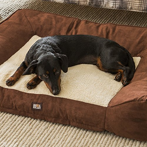 Large Memory Foam Dog Bed