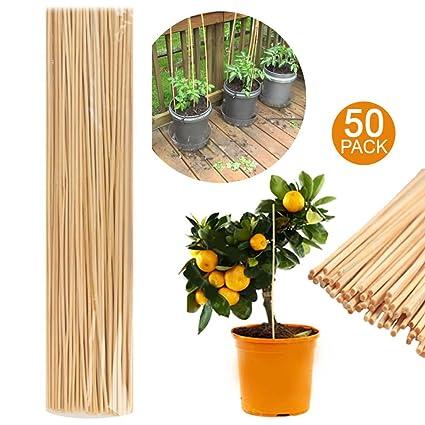 50 de madera de bambú bastones de varillas 40 cm jardín ...
