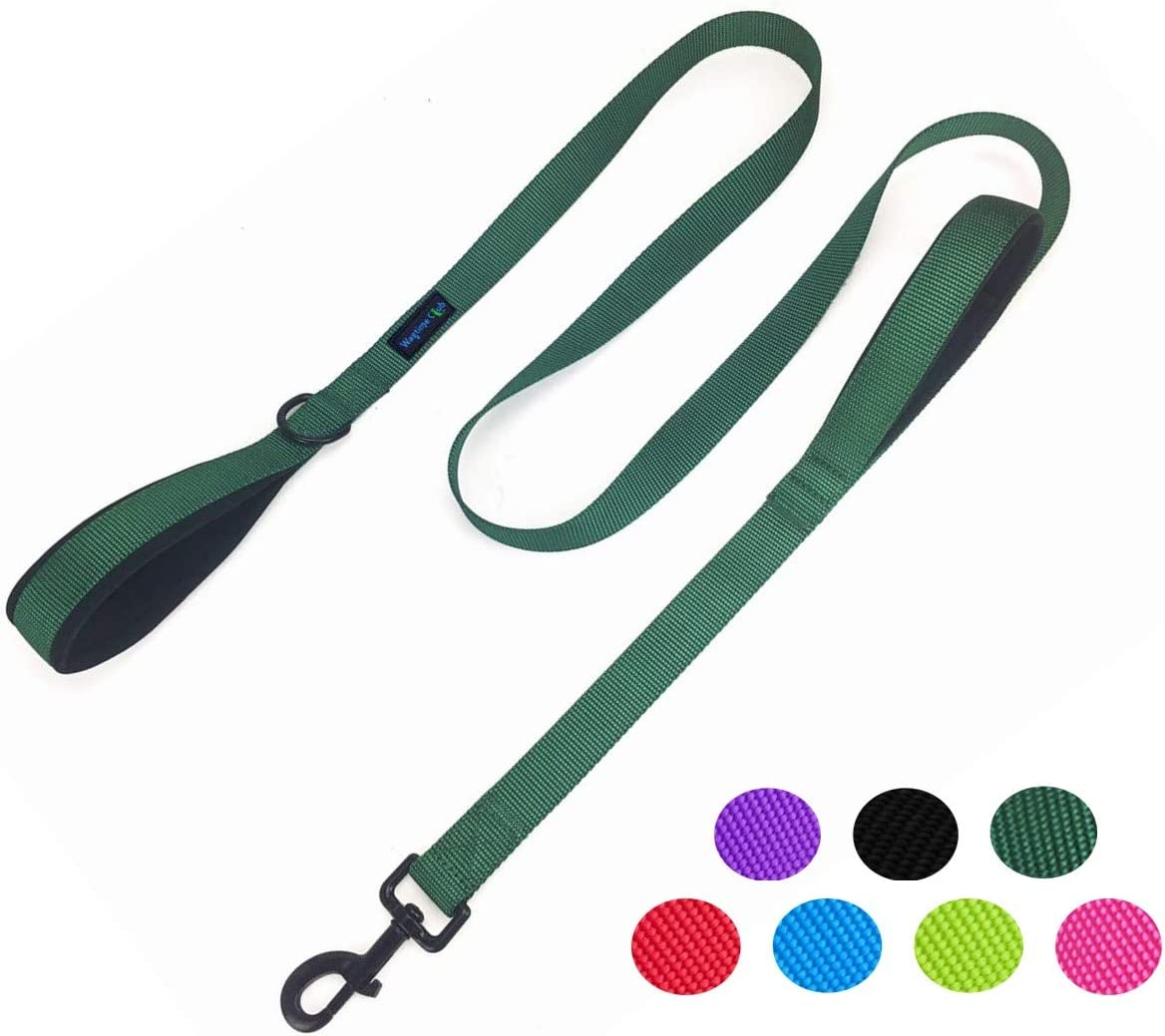 Wagtime Club Soft &Thick Dual Handle 6FT Dog Leash, Premium Strength Double Padded Handles - Vibrant Colors with Reflective Option