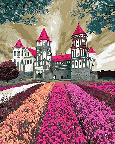 - DIY Paint by Numbers Kit for Adults - Pink Castle | DIY Paint by Numbers Landscape Scene Paintings Pictures Arts Craft for Home Wall Decor Pre-Printed Art-Quality Canvas, 3 Brushes, 24 Acrylic Paints