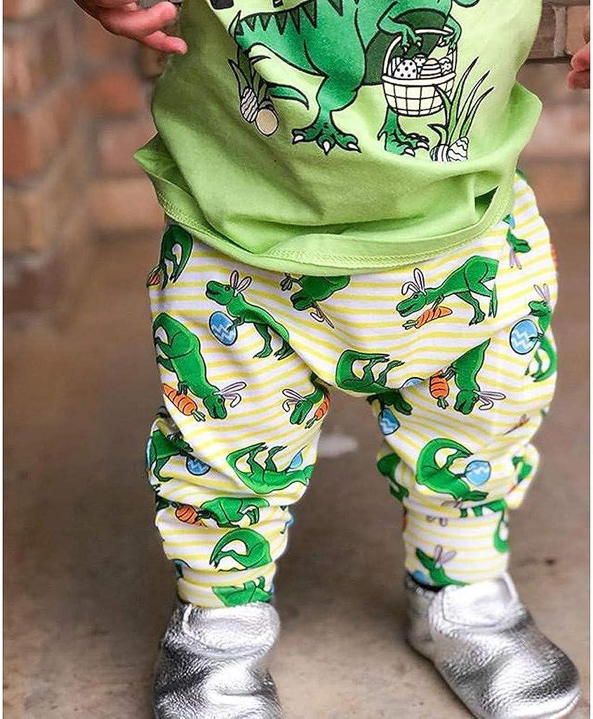 DWQuee Baby Jungen Kleidung Set Nette Dino Tops Hosen Sommer Outfits f/ür 0-4 Jahre