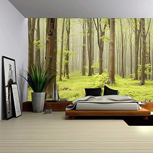 Green Misty Forest Mural Wall Mural Wall Murals Wall26