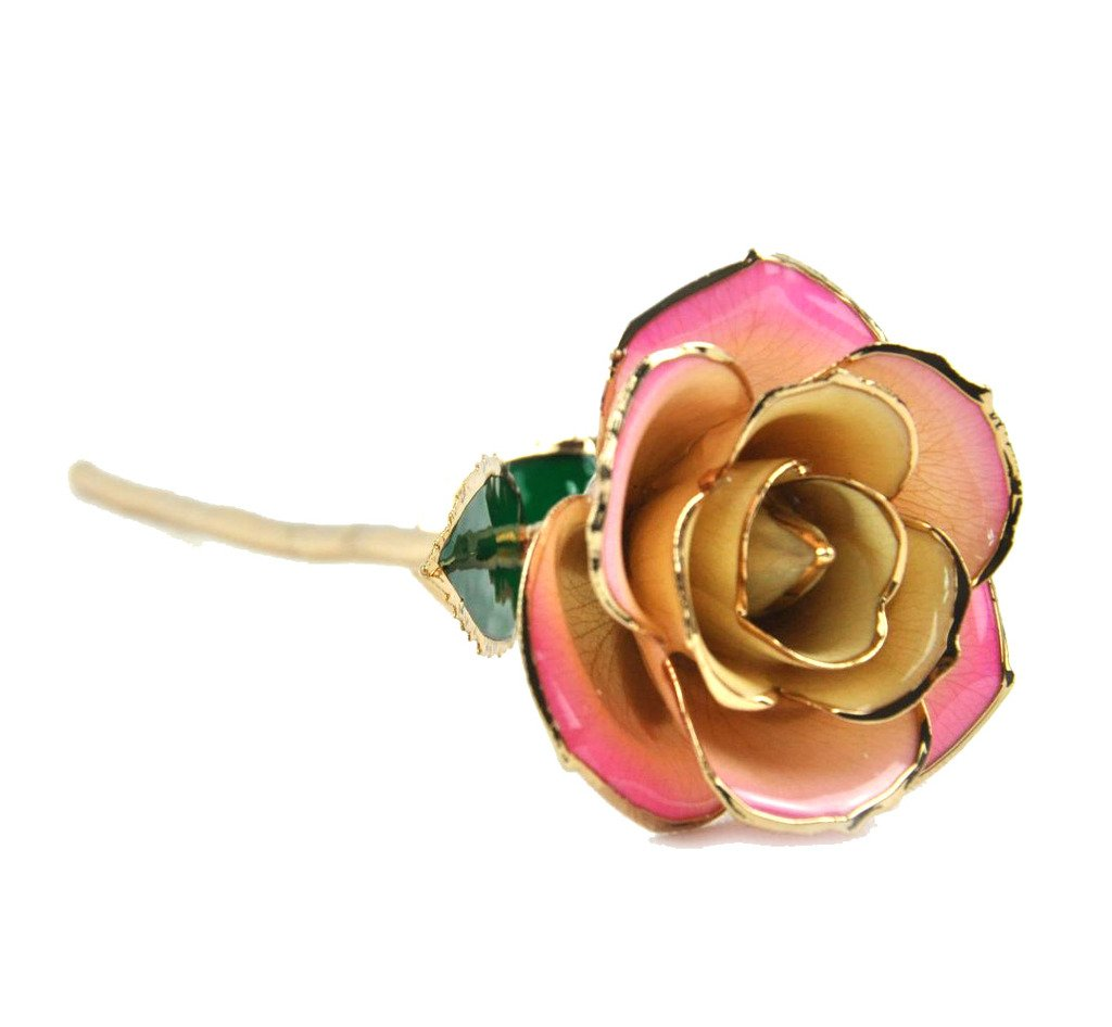ZJchao(TM) Dipped 24k Gold Foil Long Stem Gift Flower Rose for Valentine's Day, Mother's Day, Anniversary, Pink-White Mother' s Day