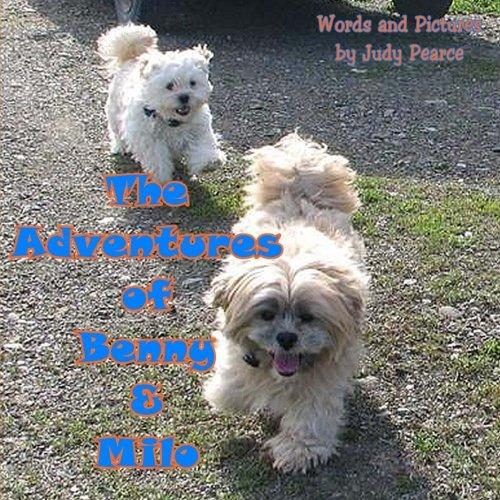 Download The Adventures of Benny and Milo: Milo's Journey Across the Rainbow Bridge pdf epub