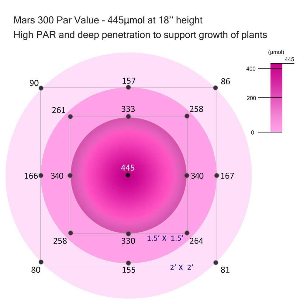 MarsHydro 300W LED Grow Light Full Spectrum for Hydroponic Indoor Plants Growing Veg and Flower by MARS HYDRO (Image #2)
