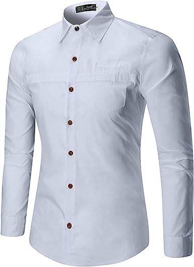Amayay Slim Camisa De Business Juventud Manga Larga Solapa Estilo Simple De Moda Casual Oficina Blusa Camisas Tops Otoño: Amazon.es: Ropa y accesorios