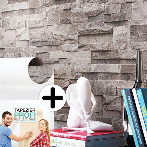 Steintapete Vlies Grau | schöne edle Tapete im Steinmauer Design | moderne 3D Optik für Wohnzimmer, Schlafzimmer oder Küche inklusive der Newroom-Tapezier-Profibroschüre mit Tipps für perfekte Wände