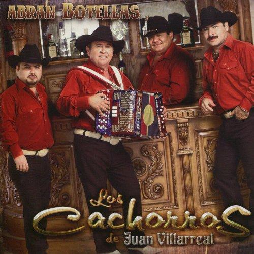 Exitos De Oro by Los Cachorros De Juan Villarreal on Amazon Music - Amazon.com