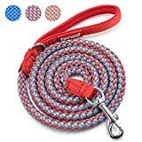 Fairwin Rope Dog Leash, 6 Foot Rope Reflective Braided Dog Leash for Large Medium Small Dogs Training with Padded Handle(6 foot,Red+Blue)
