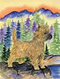 Cheap Caroline's Treasures SS8255CHF Cairn Terrier Flag Canvas, Large, Multicolor