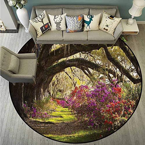 Mystical Garden Area Rug - Living Room Area Round Rugs,Nature,Mystical Garden Flourishing,Super Absorbs Mud,3'3