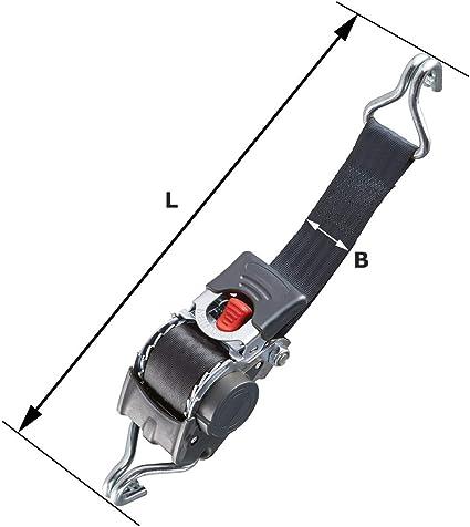 Marwotec Verbindungselemente 2 Stück Automatik Zurrgurt Spanngurt Mit Spitzhaken 3 0m X 25 Mm 300 600 Dan Auto