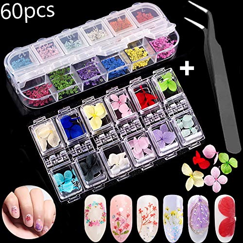 (Nail Decal-Dried Flower 36 Colored Starry Plus 24 Hydrangea Dried Nails Natural Real Dry Flower 3D Nail Art Design Accessories -Nail Art Stickers Tips Applique with 1 Tweezers Decoration Set for Women )