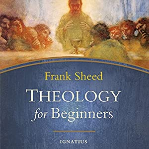 Theology for Beginners Audiobook