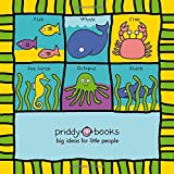 Squishy Turtle and Friends (Cloth Books)