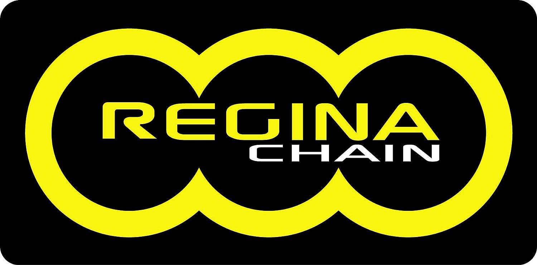 Regina ZRP//ZRT Series 137ZRP//00A Chain 525ZRP X 110 Links