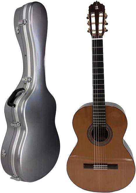 Guitarra Clásica Alhambra 30 Klavier Ziricote + Estuche: Amazon.es ...